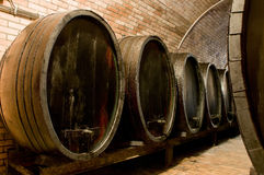 Huge barrels for storing wine Stock Photos