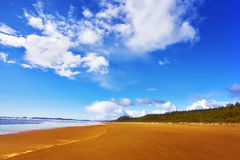 Huge  beach on island Vancouver on a midday Stock Image