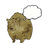 huge bear cartoon with thought bubble Stock Image