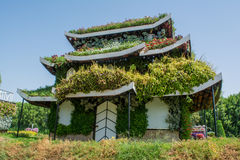 Huge beautiful amazing house made in chinese style covered with green plants and colourful flowers Stock Photos