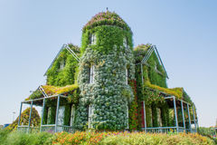 Huge beautiful amazing mansion covered with green plants and colourful flowers Stock Photos