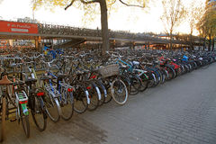 Huge bicycle parking in the center of Amsterdam Royalty Free Stock Images