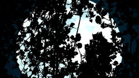 Huge Blue Moon in the Branches. Treetops wind stirs tension against the huge full moon. Slow Motion at a rate of 240 fps stock video