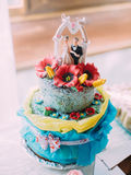 The huge blue wedding cake decorated with red flowers and the little figures of newlyweds. royalty free stock photography