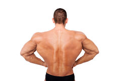 Huge bodybuilder back on steroids. Stock Photos