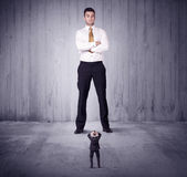 Huge boss lokking at small business man Stock Images