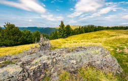 Huge boulder on a grassy meadow. Lovely summer landscape of Svydovets. huge boulder on a grassy meadow. spruce and beech forest on a hillside. wide ridge in the stock images