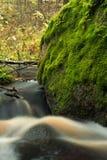 Huge boulder overgrown green moss Royalty Free Stock Images