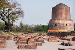 The huge brown stupa Sarnath, the ruins of stones of brick color, the site of the first Buddhist Teachings of the Buddha Shakyamun. Huge brown stupa Sarnath, the Royalty Free Stock Images