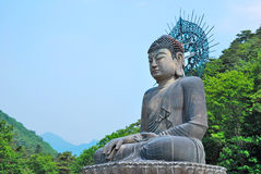 Huge buddha statue. Surrounded with nature Stock Photography
