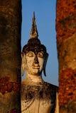 Huge buddha statue Sukhothai national park Stock Image