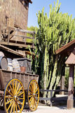 Huge  cacti in Mexico. Big cactus and wooden wagon with barrels in Mexico Royalty Free Stock Images