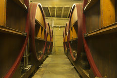 Huge casks wherein beer or wine ages. Royalty Free Stock Photos