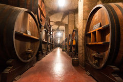 Huge Casks in a Wine Cellar Stock Photography