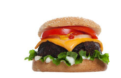 Huge Cheesburger. Low angle perspective of a large cheese burger on white background Royalty Free Stock Photography