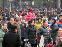 Huge Chinese Crowds. A huge crowd of people in China on a city street Royalty Free Stock Photos