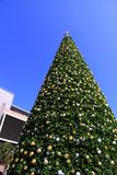 Huge Christmas tree decorations and Blue sky background Stock Images