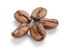 Huge coffee beans closeup Stock Photography