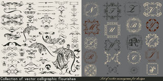 Huge collection or set of vintage vector flourishes Royalty Free Stock Photos