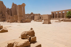 Huge column in the Karnak Temple. The destroyed statue of a sacred ram. Huge columns in the Karnak Temple. Ancient Egyptian hieroglyphs on columns. Karnak temple stock images