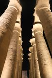 Huge columns as lotus flower Luxor temple. Night view of Luxor Temple with night lights, Egypt stock image