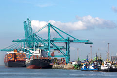 Huge container ship being unloaded with cranes in Antwerp contai Royalty Free Stock Images