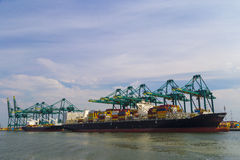 Huge container ship loaded with cranes in Antwerp container terminal Royalty Free Stock Images