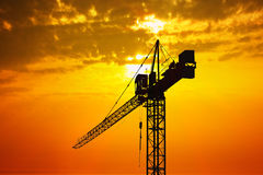 Crane at sunset Royalty Free Stock Photography