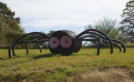 Huge Creepy Black Spider Stock Image