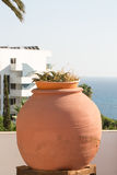 Huge decorative pot with flowers Stock Image
