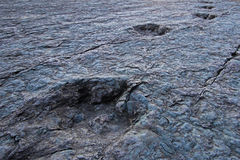 Huge dinosaur footprints, Maragua, Bolivia Royalty Free Stock Photos