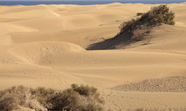 Huge dunes Stock Image