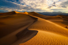 Huge dunes of the desert. Fine place for photographers and travelers. Royalty Free Stock Photography