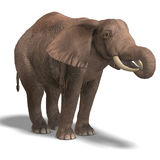 Huge elephant. Giant elephant. 3D render with clipping path and shadow over white stock illustration