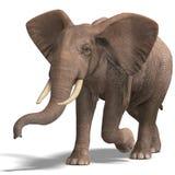 Huge elephant royalty free illustration