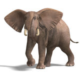 Huge elephant. Giant elephant. 3D render with clipping path and shadow over white vector illustration
