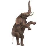 Huge elephant stock illustration