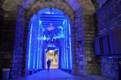 Huge Entrence of the famous castle in Ghent. Huge Entrence and swan decoration enlightened with blue led light of the famous castle in Ghent at night , the Stock Photos