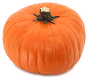 Huge Fake Pumpkin Royalty Free Stock Images