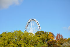 Huge Ferris wheel towering over trees. Royalty Free Stock Images