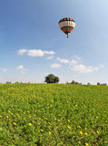 The  huge field and multicolored balloon Royalty Free Stock Photography