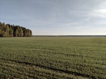 Huge fields and forests royalty free stock images