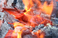 Huge fire with the burning red flame, the smoldering pieces of coal of wood and with a small amount of a smoke. Stock Photo