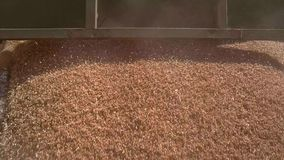 Huge flow of grain. stock footage