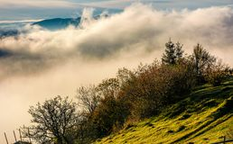 Huge fog rise above the hillside. Lovely autumnal scenery in mountains at sunrise Stock Photography