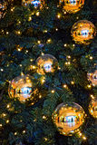 Huge Golden Christmas balls on a green spruce. Huge Golden Christmas balls hanging among glowing lights garland on a green spruce. The balloons reflected all Royalty Free Stock Photography