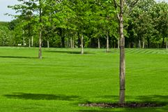 Huge green lawn. In the city park Stock Photo