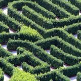Huge green maze made with hedges in a garden of a villa Stock Photography
