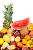 Huge group of fresh vegetables and fruits Stock Photography