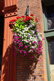 Huge hanging flower baskets Royalty Free Stock Images